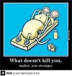Exercise inspiration from a mouse!